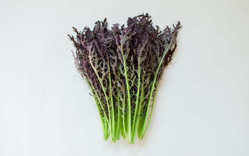 有機赤からし菜