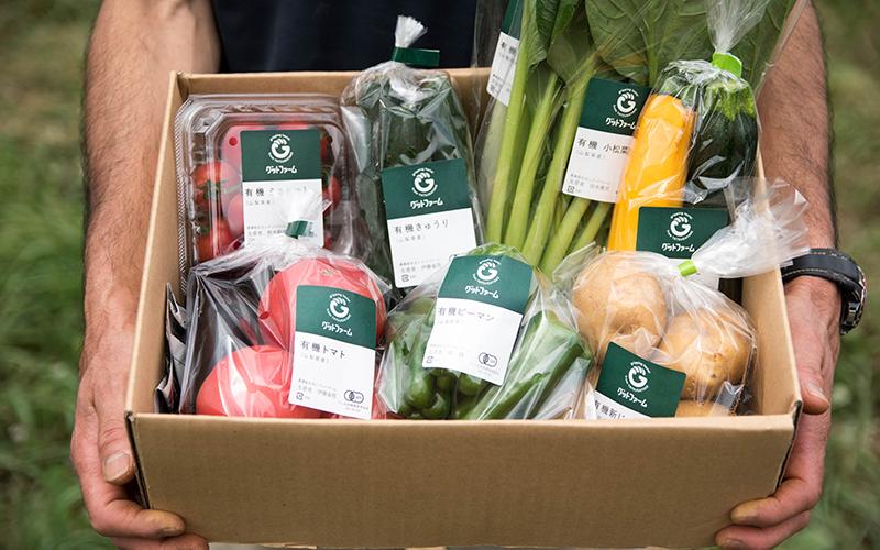 野菜ボックスをはじめました!