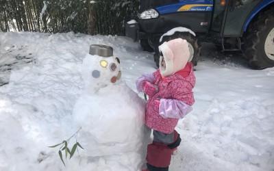 今年はじめての雪
